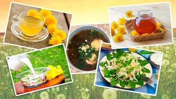 Изображение для статьи — 5 интересных блюд, для приготовления которых потребуется одуванчик