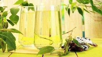 Изображение для статьи — Как влияет на организм употребление березового сока?