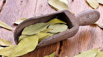 Изображение для статьи — Как можно использовать лавровый лист для красоты и здоровья?