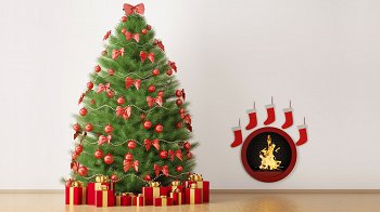 Изображение для статьи — Как сохранить свежесть новогодней елки до весны?